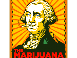 'Shark Tank' Meets Cannabis on Marijuana TV Show, Julie Weed
