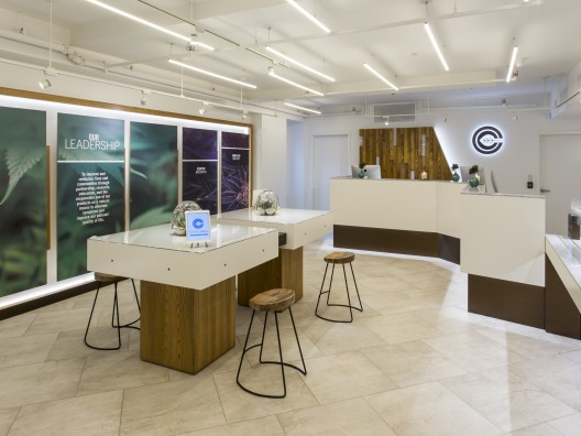 Manhattan's First Medical Marijuana Dispensary Opens And Is Already Working With Mt. Sinai Hospital, Julie Weed