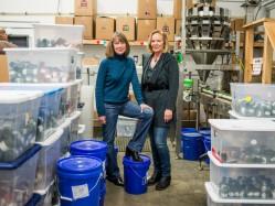 Two Retirees Create Marijuana Packaging Business, Julie Weed