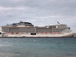 Cruise Ships: What travelers can expect, Julie Weed